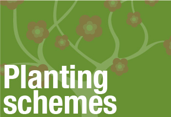 header-Plantingschemes