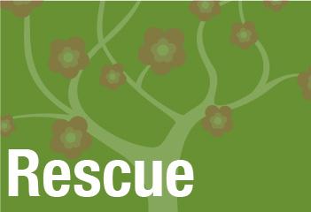 header-Rescue